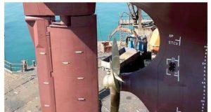 Timón del buque