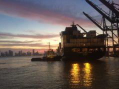 OMC, organización, mundial, comercio, organización mundial del comercio, crecimiento, incremento, comercio mundial, pronóstico, buques, contenedores, economía, información marítima, globalización, información portuaria, información marítima y portuaría